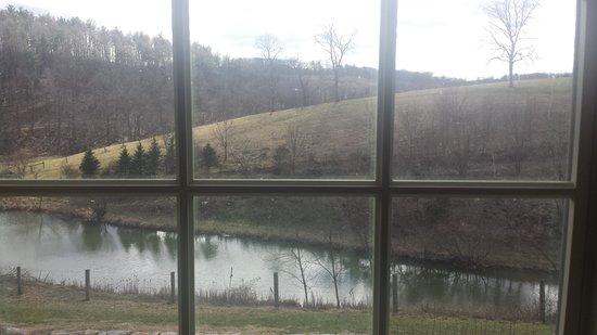 Glasbern Inn - Fogelsville / Allentown: my view
