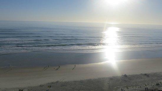 Hyatt Place Daytona Beach - Oceanfront : ocean