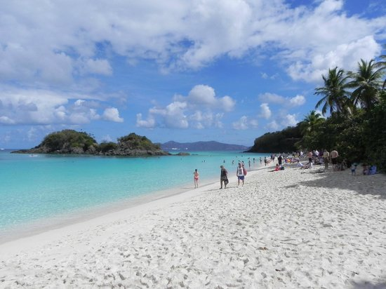 Right side shoreline at Trunk Bay