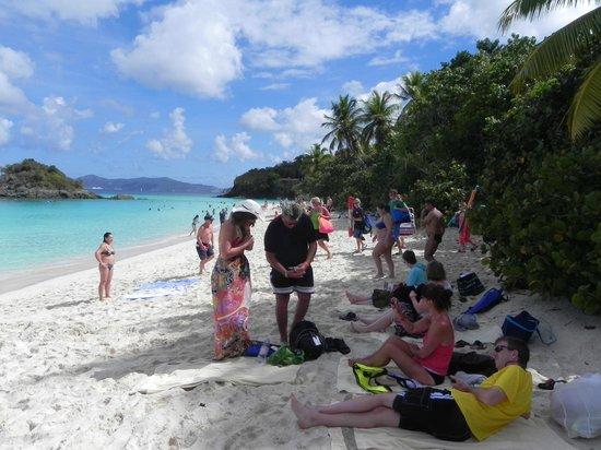 Trunk Bay beach scene