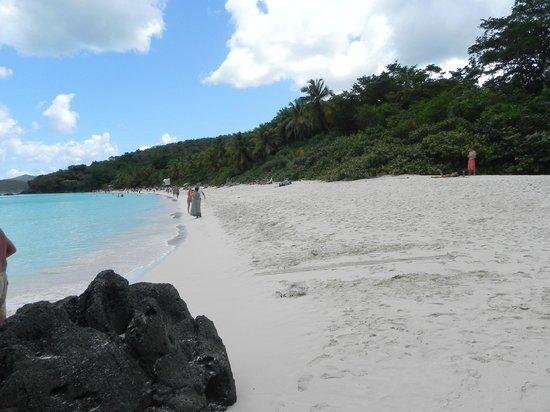 Long wide sandy beach at Trunk Bay