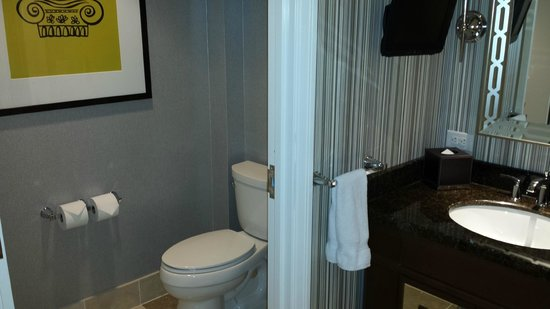Caesars Palace: toilet