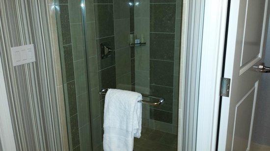 Caesars Palace: shower