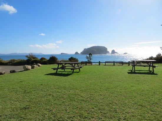 Hahei Holiday Resort: View