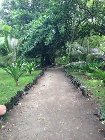 Erakor Island Resort & Spa : The island path