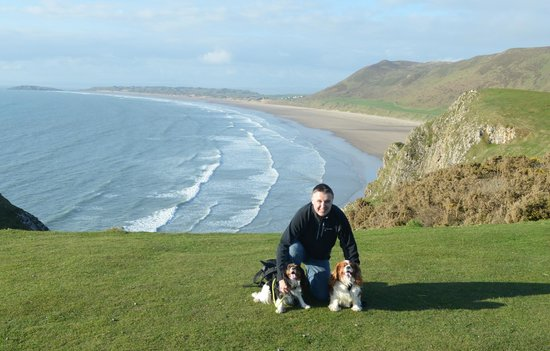 Rhossili Bay : Chester and Oscar enjoying their walk
