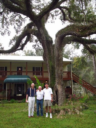 The Chassahowitzka Hotel: View hotel and big oak tree