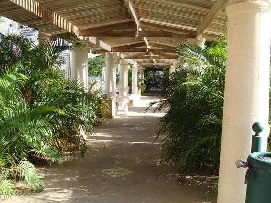 Herods Palace Hotel Eilat : Hotel grounds