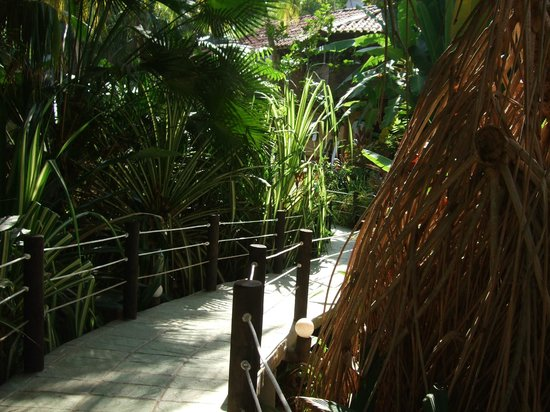 Ylang Ylang Beach Resort: path to pool and restaurant