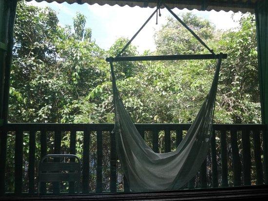 Amazônia Jungle Hotel: Todos os quartos tem varanda para esta linda visão das floresta.