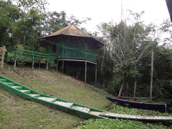 Amazônia Jungle Hotel: Redódromo! :)