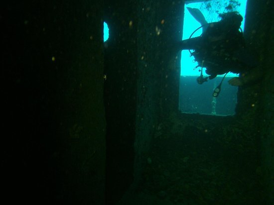 PADI Caribbean Dive College : going inside the wreck