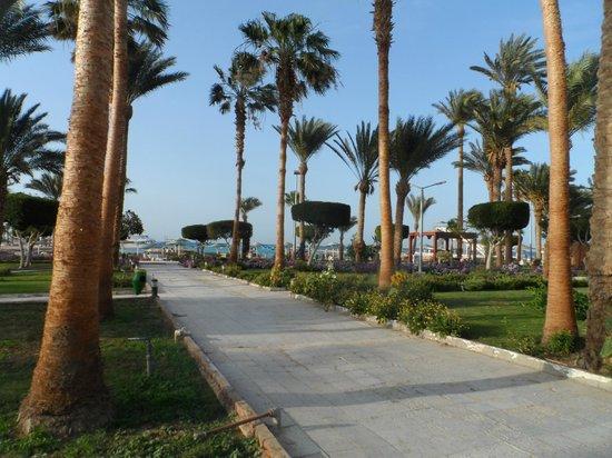 Festival Shedwan Golden Beach Resort: Много зелени и пальм!