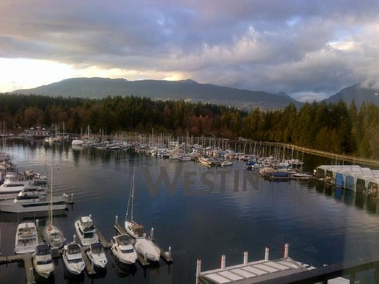 The Westin Bayshore, Vancouver: View from my room