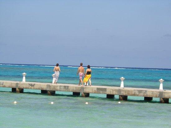 Regal Beach Club : Rum Point