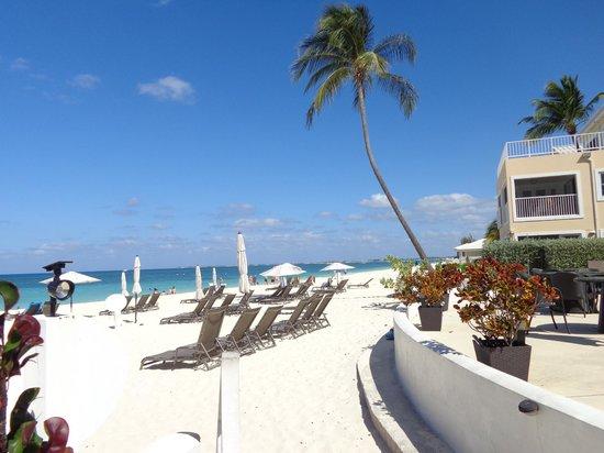 Regal Beach Club: Beach