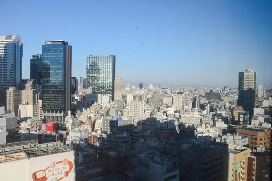 Shinjuku Prince Hotel : View from the room. No noise from the outside.