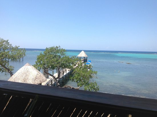 Tranquilseas Eco Lodge and Dive Center: View from the bar