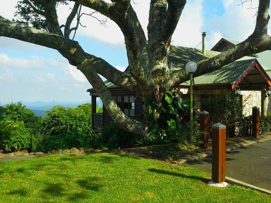King Ludwigs Maleny Views Restaurant: Side garden