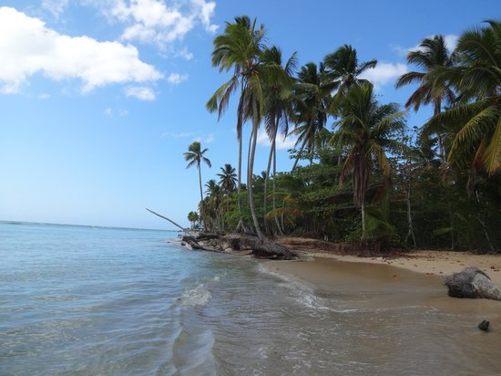 Sublime Samana: to the east of the resort