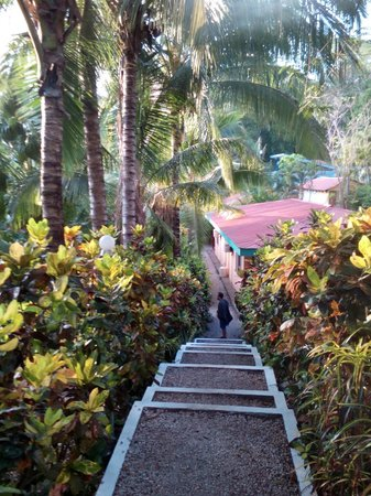 El Sueno Tropical : The walk down from the pool to our room