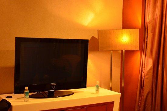 Piccadily Hotel New Delhi: room