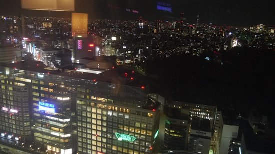 Hotel Century Southern Tower: View of Times Square and Shinjuku Gyoen