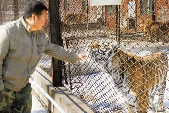 Shenyang Forest Wild Animal Zoo: the small outdated cages in this zoo