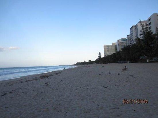 Ocean Park Beach: OPB2