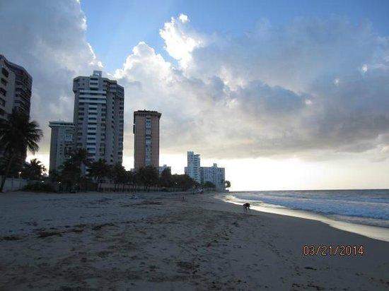 Ocean Park Beach: OPB3