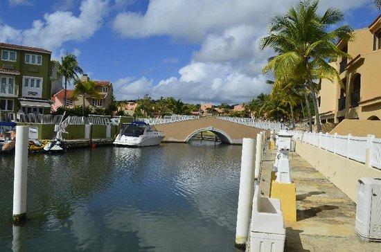 Park Royal Puerto Rico at Club Cala: View from Harbor condo units
