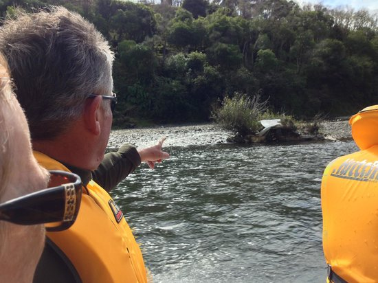 Taumarunui Canoe Hire and Jet Boat Tours : A Different Sort of Island on the Wanganui River