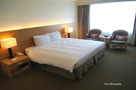 Parkview Hotel: Spacious room with wonderful view