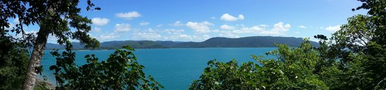 Daydream Island Resort & Spa : View from the rainforest walk