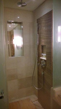 The Westin Guangzhou: The standing shower