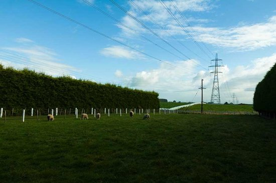 Lorneville Lodge and Holiday Park: countryside scene