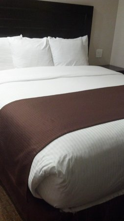 Americas Best Value Inn Riverside: Great bed and sheets