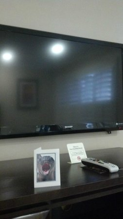 Americas Best Value Inn Riverside : Nice TV
