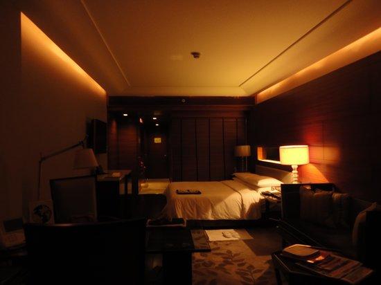 The Leela Ambience Gurugram Hotel & Residences : Roomview2