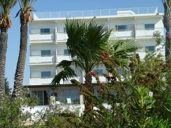 Asterias Beach Hotel: aussenbereich