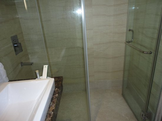 Stately Suites MG Road : Shower