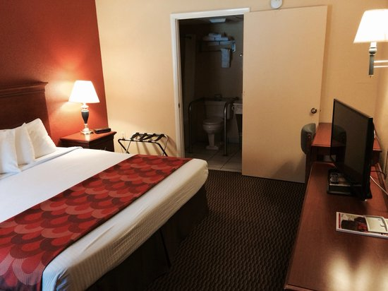 """Super 8 Downtown Gatlinburg at the Convention Center: King bed with new 39"""" led tv"""