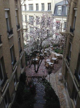 Hotel Magellan: Весной расцветает магнолия