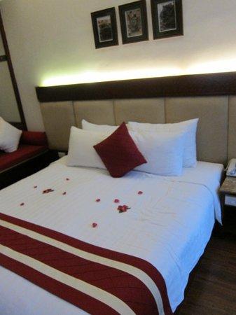 Hanoi E Central Hotel : Huge room