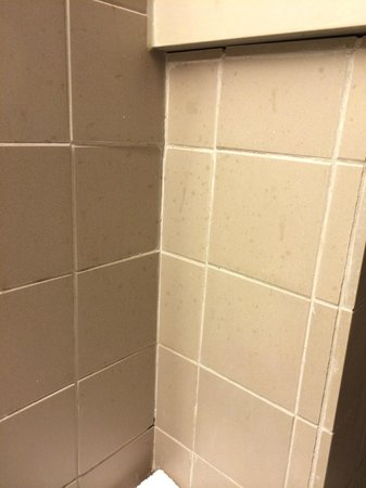 Hotel Matelote: Dirty tiles in bathroom