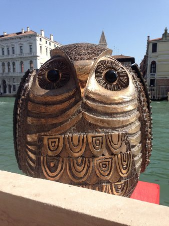 Hotel Palazzo Stern: Owl on terrace