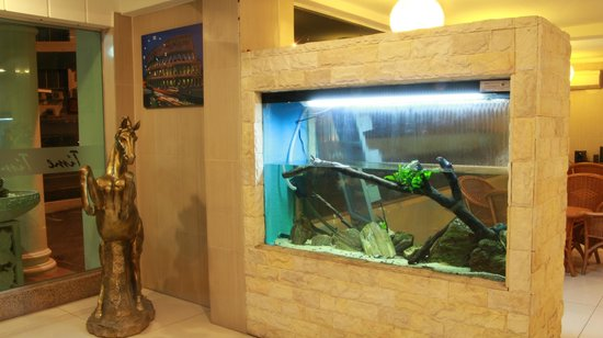 Time Hotel Melaka: All Natural Theme Aquarium