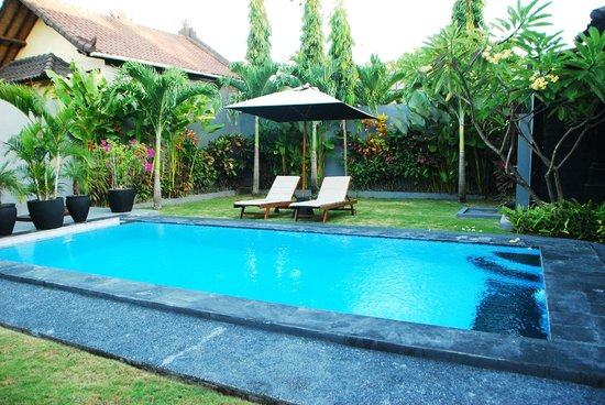 Premium Villas Seminyak: The Pool