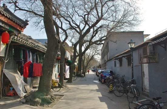 Double Happiness Beijing Courtyard Hotel: The Hutong