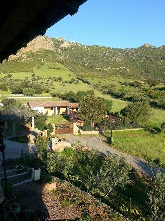 """Bed & Breakfast Monteruiu: La """"fattoria"""""""